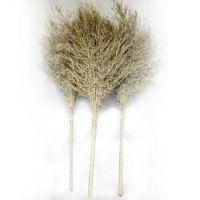 大扫把 竹扫把 竹扫帚马路扫扫院子户外庭院家用加大